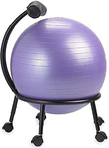 gaiam custom fit ball chair